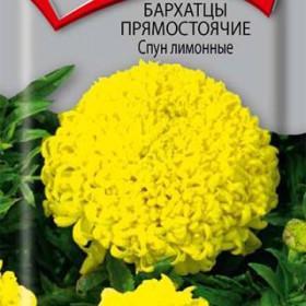 barhattsi-plyushevaya-yubochka-foto-smotret-filmi-onlayn-seks-skritaya-mini-kamera